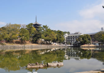 奈良で荷物を預けられるecbo cloak加盟店人気トップ5