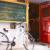 【京都】自転車だからこそ見える風景を探そう。荷物を預けてレンタサイクルができるecbo cloak加盟店5選!